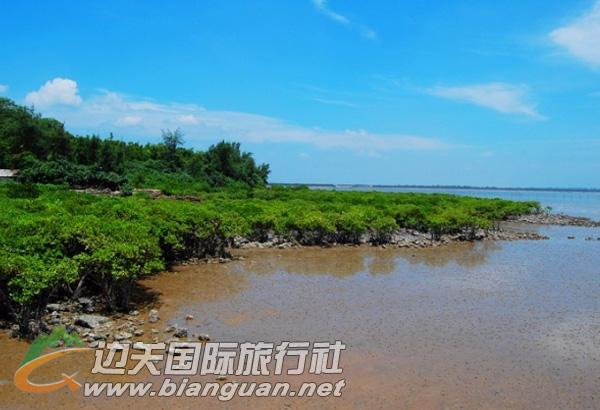 交东滨海红树林公园,东兴交东滨海红树林公园