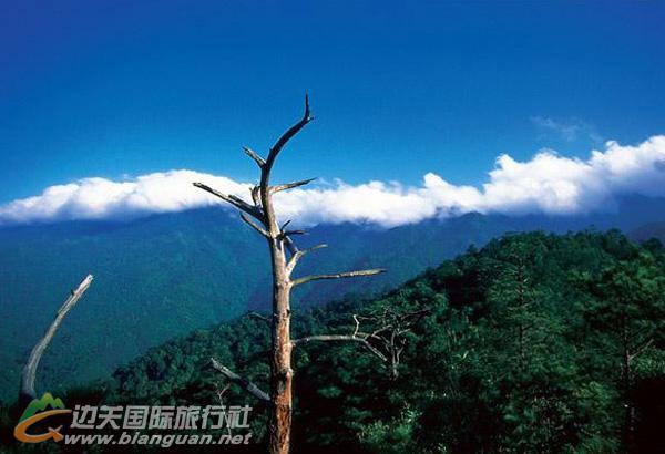 十万大山国家森林公园,防城港十万大山国家森林公园