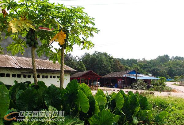 东兴南山绿园农家乐