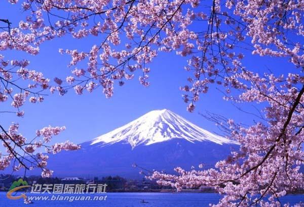 日本、本州6天5晚双飞豪华团(广州往返——赏花季)
