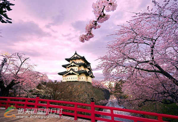 日本本州浪漫樱祭6日之旅