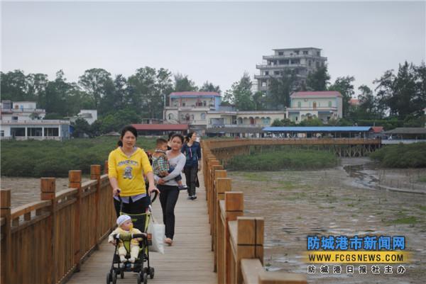 东兴市竹山景区红树林吸引游客前来踏青