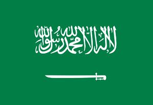 沙特阿拉伯签证